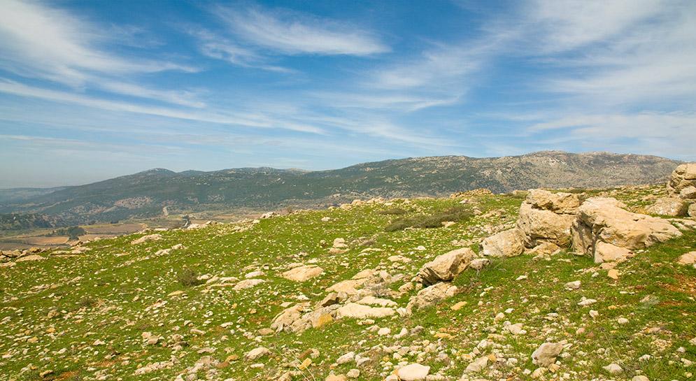 Royal Views - Tiberius- North